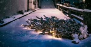 Weihnachtsbaum-Einsammeln Winterborn @ Treffpunkt: CVJM-Heim