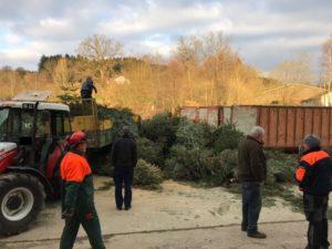 Weihnachtsbaum-Aktion @ Gemeindehäuser im Bezirk